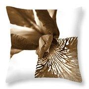 Japanese Iris Flower Sepia Brown 2 Throw Pillow