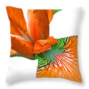 Japanese Iris Orange White Five Throw Pillow