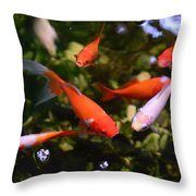 Japanese Koi Fish Throw Pillow