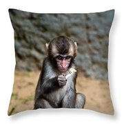 Japanese Macaque Monkey Throw Pillow