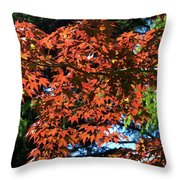 Japanese Maple Canopy Throw Pillow