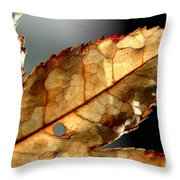 Japanese Maple Leaf Brown - 4 Throw Pillow