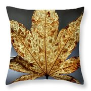 Japanese Maple Leaf Brown - 3 Throw Pillow