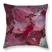 Japanese Maple Leaves With Frost Throw Pillow