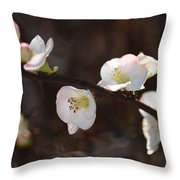 Japanese Quince 2 Throw Pillow