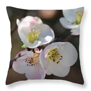 Japanese Quince 4 Throw Pillow