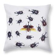 Japanese Rhinoceros Beetle Males Throw Pillow