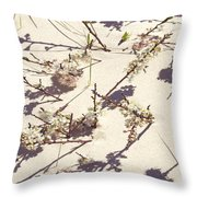 Japanese Sand Dune Throw Pillow