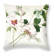 Japanese Tree Peony Throw Pillow by  Lucy Cust