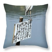 Japanese Waterfowl - Kyoto Japan Throw Pillow