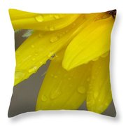 Jaune Petals Throw Pillow