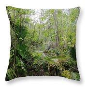 Jean Lafitte National Preserve Swamp Louisiana Throw Pillow