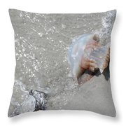 Jelly Ball And Oyster Shell Washed Upon Nc Beach Throw Pillow