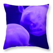 Jelly One Throw Pillow