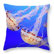 Jellyfish 9 Throw Pillow