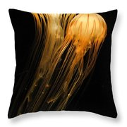 Jellyfish On Black Throw Pillow