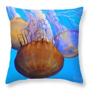Jellyfish Trio Throw Pillow