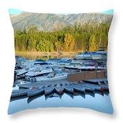 Jenny Lake  Throw Pillow