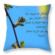 Jeremiah 29 Throw Pillow