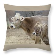 Jersey Cow And Calf Throw Pillow