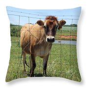 Jersey Cow In Georgia Throw Pillow