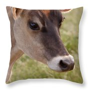 Jersey Cow Portrait Throw Pillow