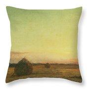 Jersey Meadows Throw Pillow