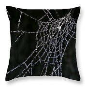 Jewel In The Crown Throw Pillow