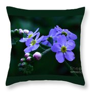 Jewel In The Shadows Throw Pillow