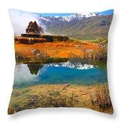 Jewel Of The Desert Throw Pillow