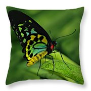 Jewelled Throw Pillow