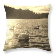 Jewels Of The Lake Throw Pillow