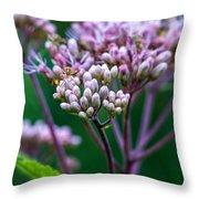Joe Pye Weed And Bug Throw Pillow