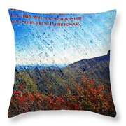 John 12 26 Throw Pillow