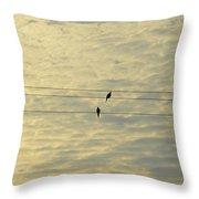John 132 Sunday Morning Throw Pillow