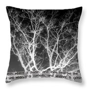 John 3 8 Throw Pillow