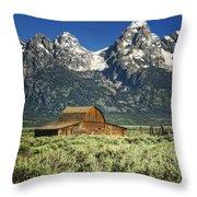 John Moulton Barn Throw Pillow