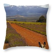 Johnny And The Mountain Throw Pillow