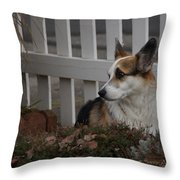 Johnny By The Fence Throw Pillow