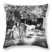 Johnston Horse Wagon Throw Pillow