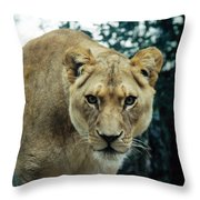 Join Me For Lunch? Throw Pillow