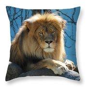Joshua The Lion On His Rock Throw Pillow