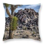 Joshua Tree 13 Throw Pillow