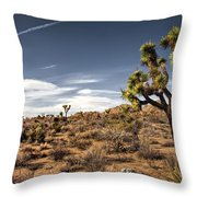 Joshua Tree 15 Throw Pillow