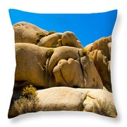 Joshua Tree 29 Throw Pillow