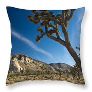 Joshua Tree Afternoon Throw Pillow