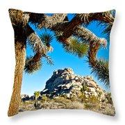Joshua Tree And Jumbo Rocks By Quail Springs In Joshua Tree Np-ca Throw Pillow