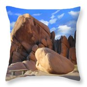 Joshua Tree Anomoly Throw Pillow