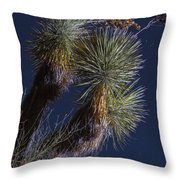Joshua Tree By Moonlight Throw Pillow