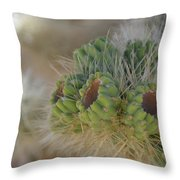 Joshua Tree Cholla Cactus Throw Pillow